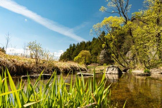 Ritterkamp im Frühling 2020-04-26