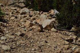 Bryce_Canyon_04_big.jpg