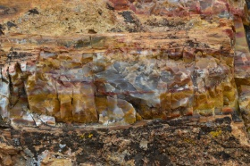 Escalante_Petrified_Forrest_02_big.jpg