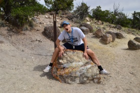 Escalante_Petrified_Forrest_15_big.jpg