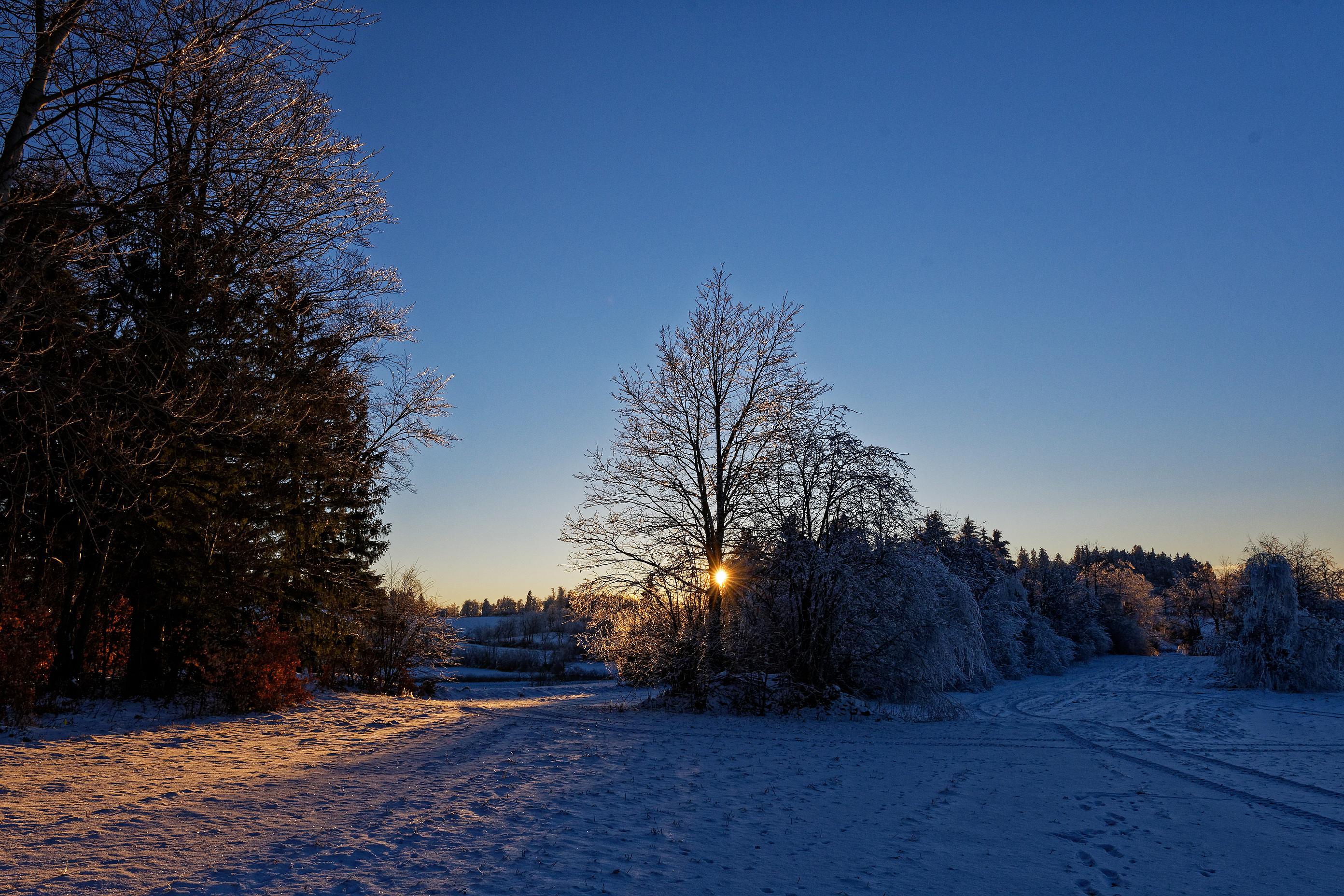 abendstimmung im schnee 2021-02-18