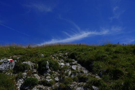 almwiese mit wolken hdr