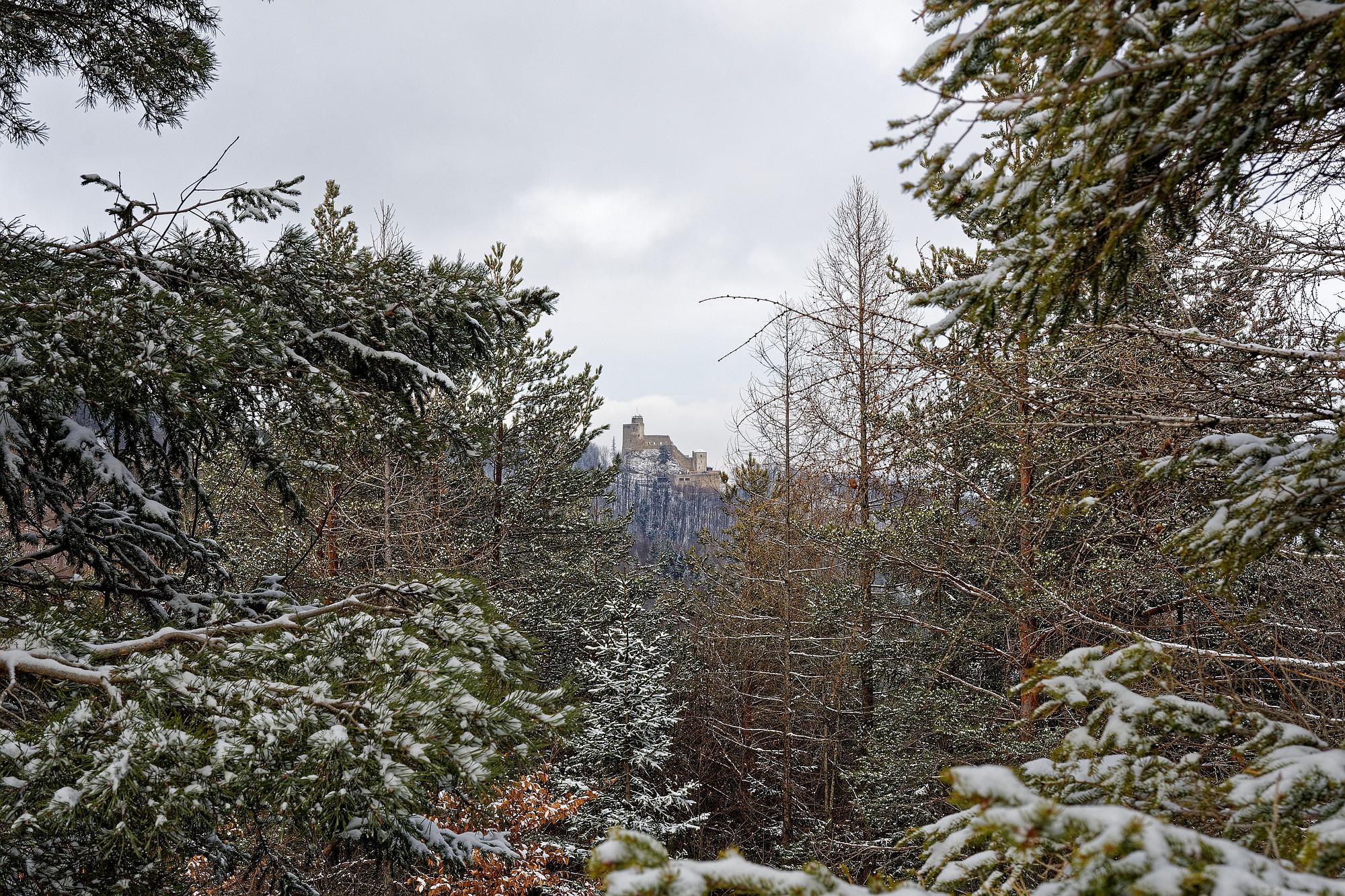 araburg im schnee 2021-02-04