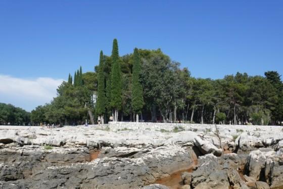 bäume strand umag
