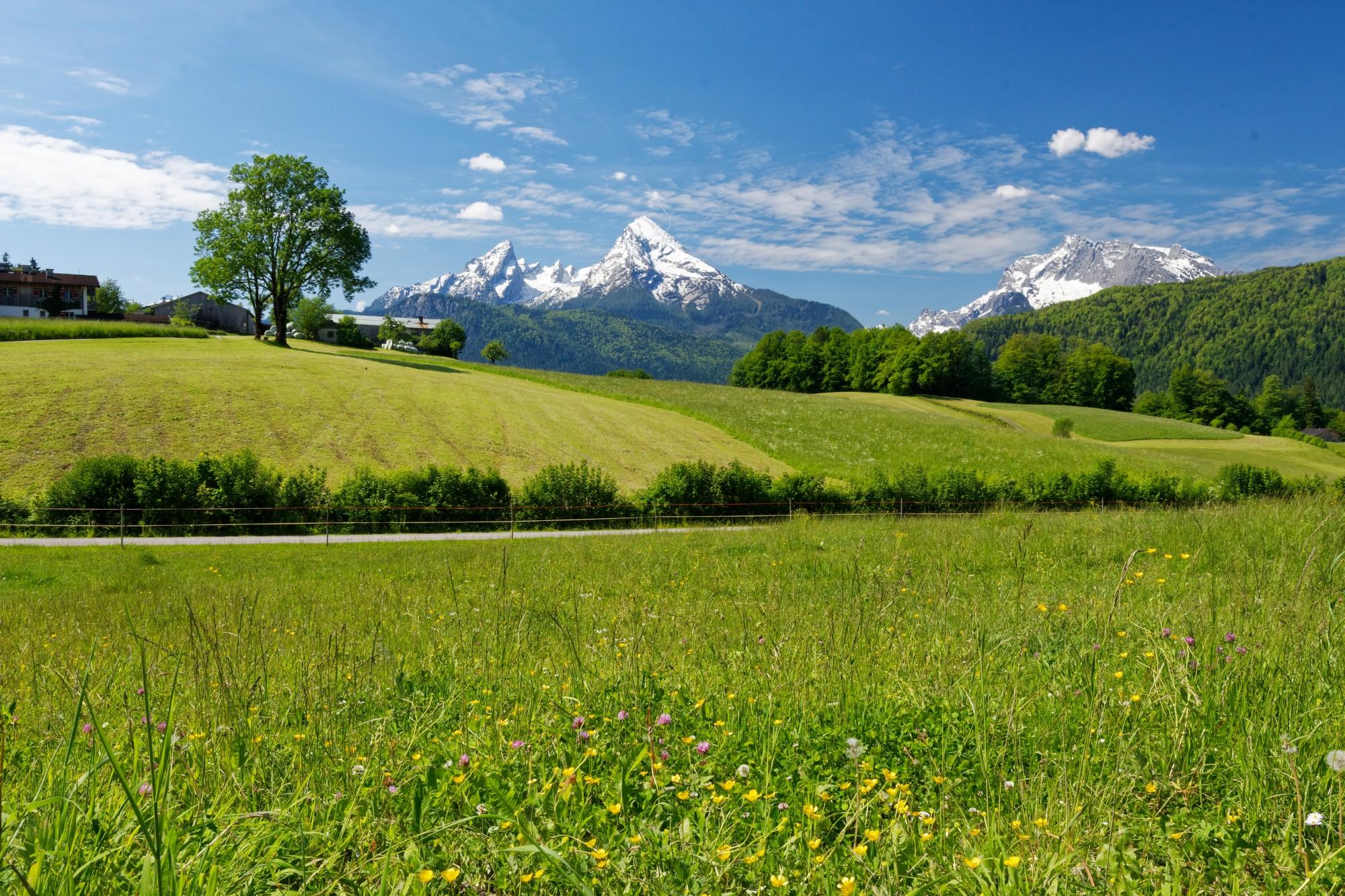 bayrische berglandschaft bei bischofswiesen 2021-06-14