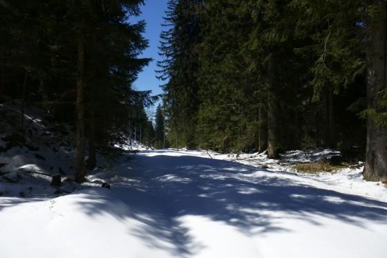 schnee am leonsberg aufstieg