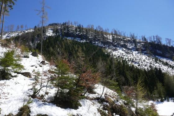 schneelandschaft am leonsberg