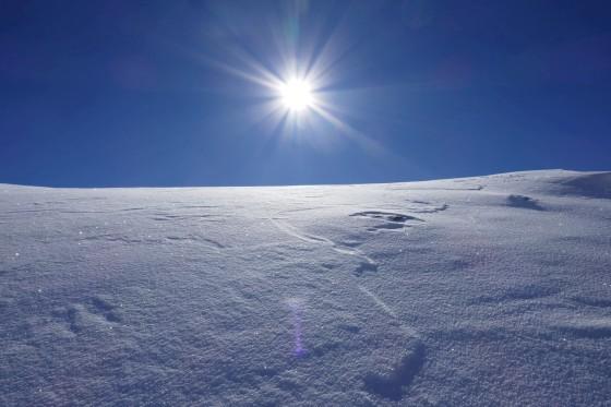 sonne glitzernder schnee königsleiten