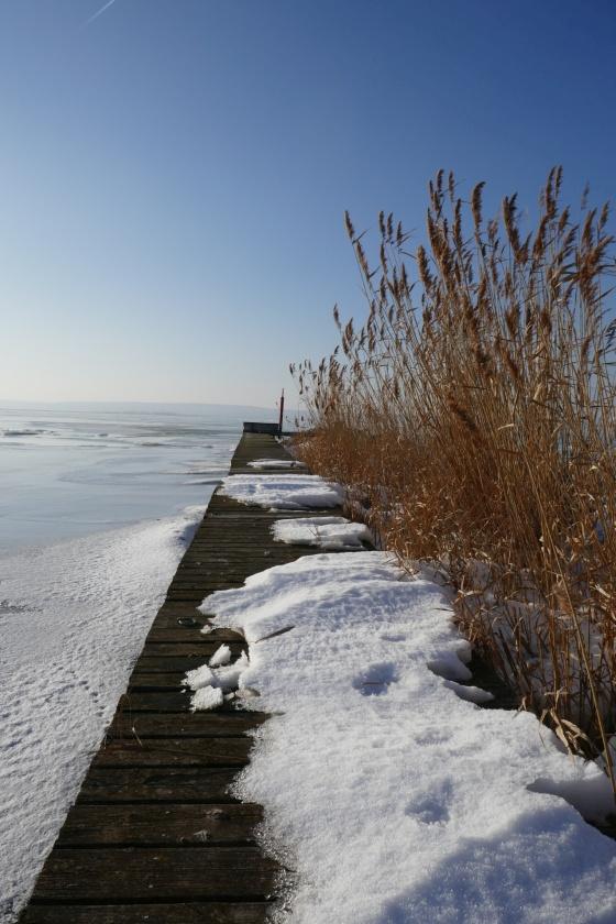steg schnee schilf neusiedlersee