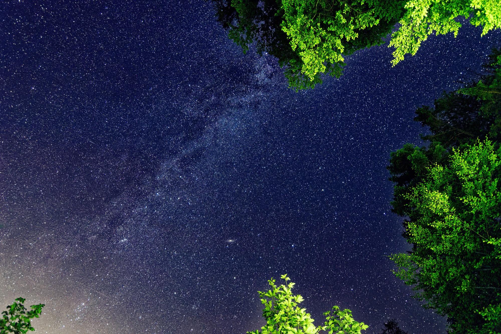 sterne im grünen 2021-08-26