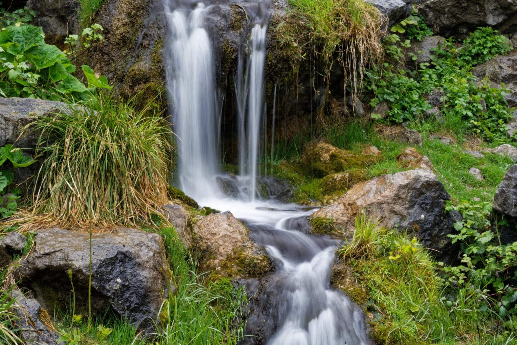 wasserfall im saftigen grün