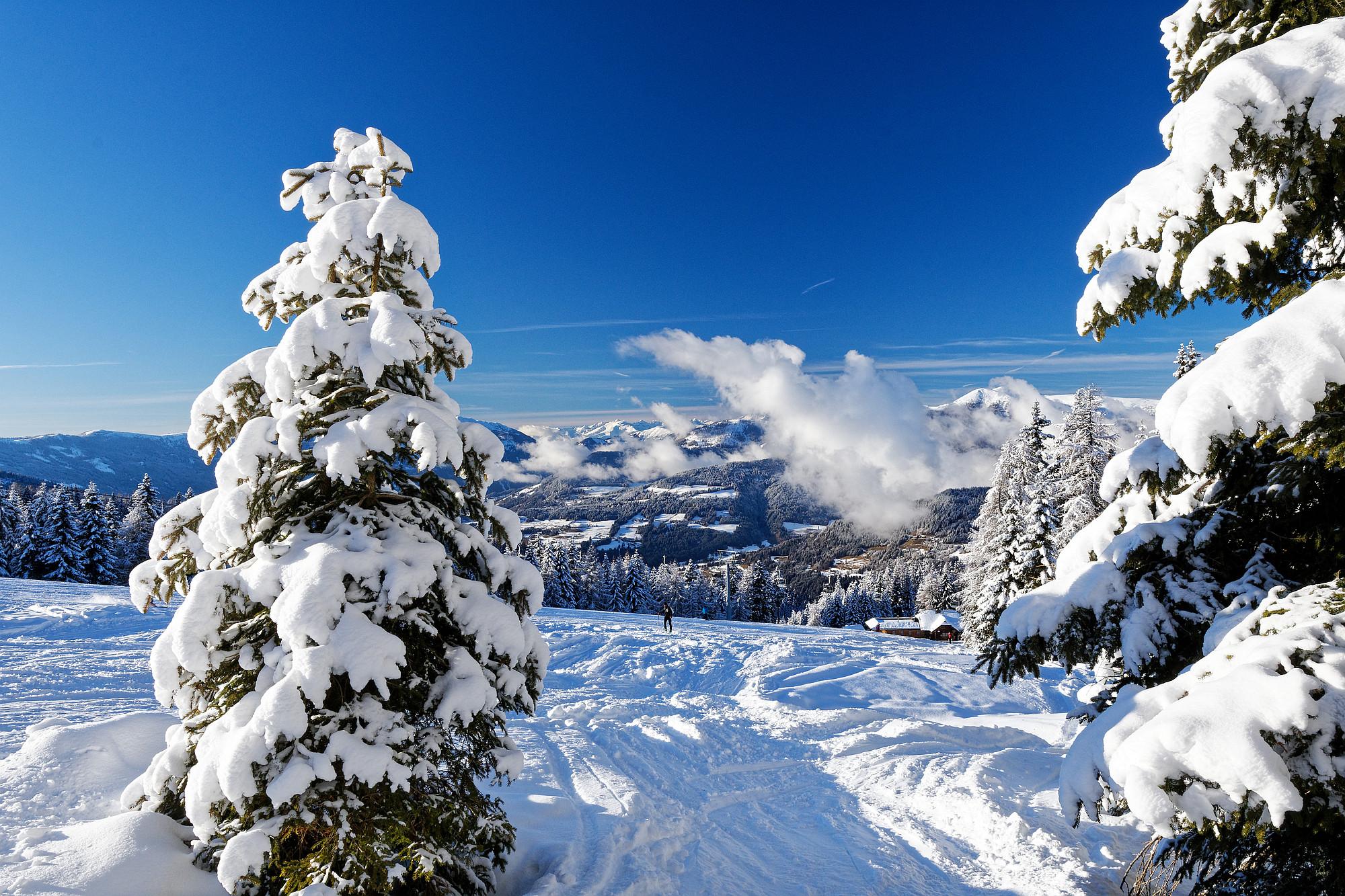 winterwonderland 2020-12-30